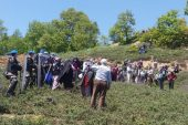 Bursa'da madene geçit vermeyen köylülere gözaltı!