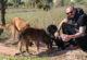 10 Arkadaşının Adını Sahiplendiği Sokak Hayvanlarına Verdi!