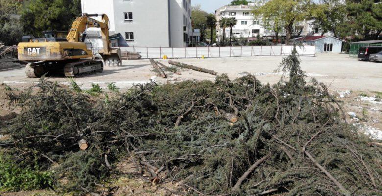 Bursa'da okul bahçesindeki ağaç katliamını mahalleli önledi