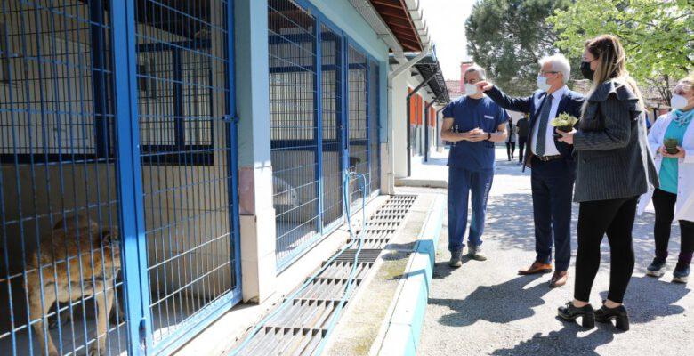 Erdem veteriner hekimlerin gününü kutladı