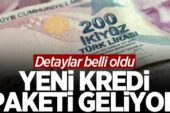Yeni ekonomi paketi geliyor: 100 bin liralık kredi desteği