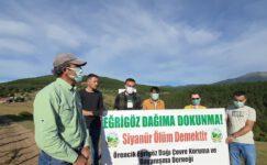 Kütahya'da Maden Yüzünden Yaşanan Ağaç Katliamına Köylülerden Sert Tepki!